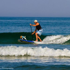 dr-mark-paddle-boarding-with-jack-the-jack-russell-ocnj